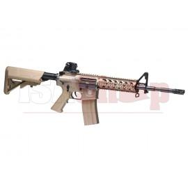 CM16 Raider V2 GBB DST