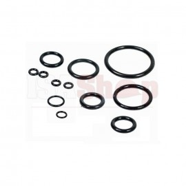 O-Ring Kit (Covers All Engine Models)